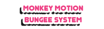 Monkey Motion Bungee Jump System